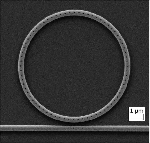 Pagaminto mikro žiedinio rezonatoriaus SEM nuotrauka.
