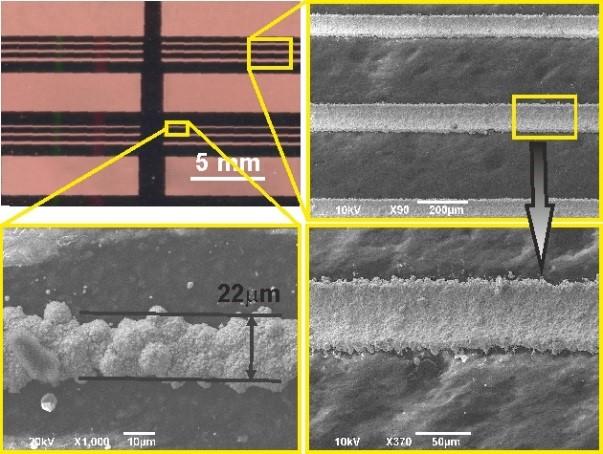Mikroskopo nuotraukos demonstruojančios metalo nusodinimo skyrą polimerams